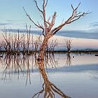 Lake Mokoan  Victoria  Australia by William Bullimore