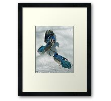 Snow Spat Framed Print
