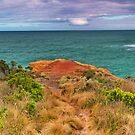 Shipwreck Coast Pano. by Phil Thomson IPA