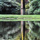 The Spire - Bisley Gardens Mt Wilson NSW by Bev Woodman