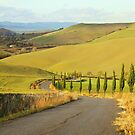 Tuscan Road by Emma Holmes