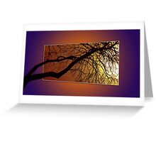 REACHING FOR THE SUN  Greeting Card