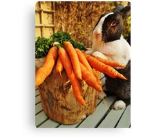 Bunny Antics Canvas Print