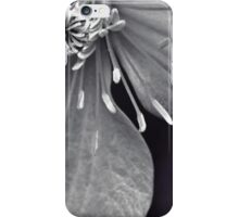 Clematis in Monochrome II iPhone Case/Skin