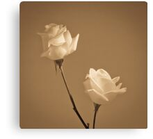 Pair of white roses Canvas Print