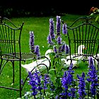 Relax In The Garden by Gabrielle  Lees