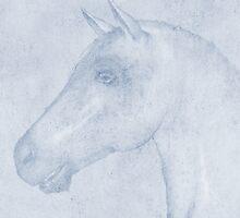 Equus by John Edwards