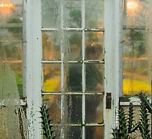 The Working Greenhouse by Marilyn Cornwell