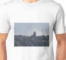 seal on the rocks Unisex T-Shirt