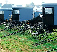 Amish Buggies in a Row at Mud Sale by KellyHeaton