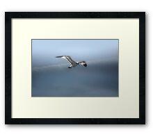 Heavenly Flight Framed Print