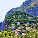 "Capri: Life on an Mountain Island by Christine ""Xine"" Segalas"