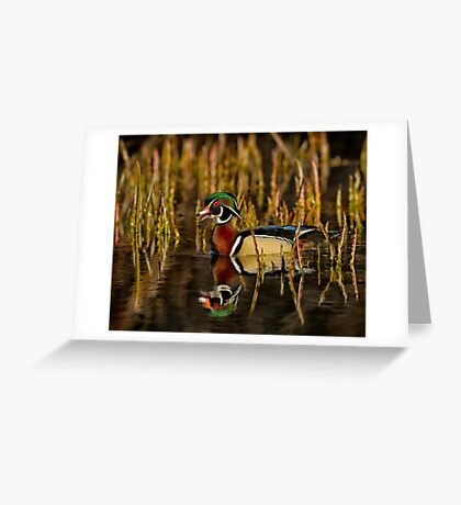 In my pond Greeting Card