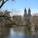 Central Park Scenery - New York City by Patricia127