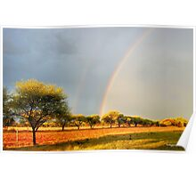 A DOUBLE RAINBOW AFTER THE FIRST RAIN! Poster