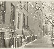 Summer's Dormant Dream - Winter - Upper East Side - NYC by Vivienne Gucwa