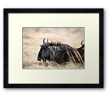 Pilanesburg Wildlife Framed Print