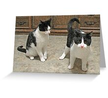 Don't Just Stand There, Help Me! Greeting Card