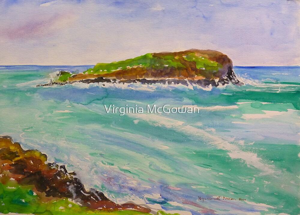 Cook Island # 3 Fingal Headland NSW  by Virginia McGowan