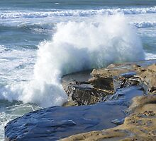 Watching The Waves ~ Sunset Cliffs, California by Marie Sharp