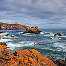 St. Abbs Rocks by Tom Gomez