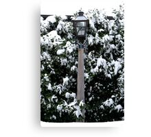 Narnia Lamplight Canvas Print