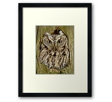 For Your Eyes Only  Framed Print