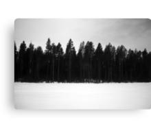 Train Landscape I Canvas Print