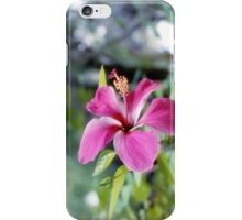 Ladies Series - Bahamian Flower iPhone Case/Skin