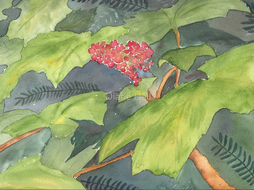 Pacific Coast Ruby by Diane Hall