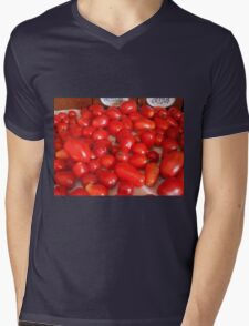 Clay's Garden 01 Mens V-Neck T-Shirt