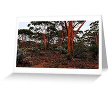 Salmon Gums Greeting Card