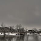 Gray Skies by jrwyatt