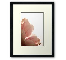 Magnolia old rose (rectangle) Framed Print