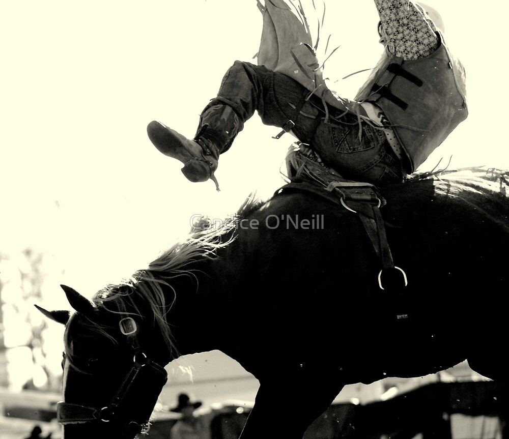 Saddle Bronc in B&W Image 1 by Candice O'Neill
