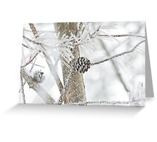 Snow covered pine code Greeting Card