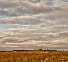 Saskatchewan Landscape by derejeb