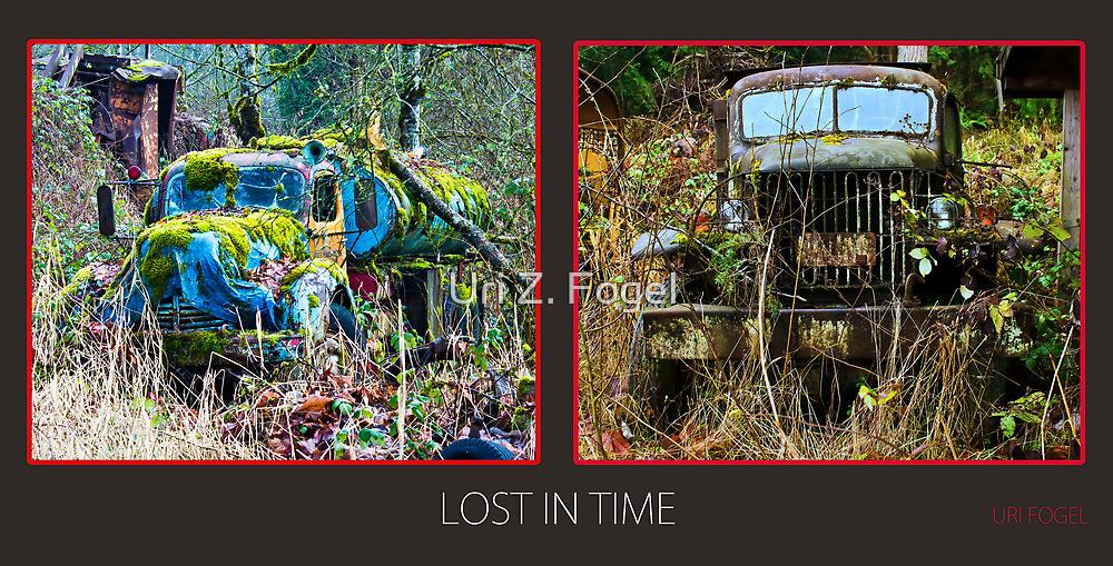 Lost in time  by Uri Z. Fogel