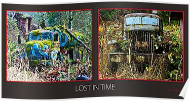 Lost in time  by Uri Z. Fogel
