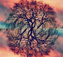 Willow Tree Sunsets by amyflorenceart