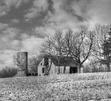 Country Scene by Linda Miller Gesualdo