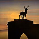 Stag Gate by naturelover