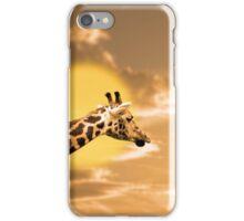 zebra portrait in the sunset iPhone Case/Skin