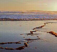 Beach Sunset - Part 1 by agedog
