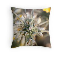 Frost kissed Gorse Throw Pillow