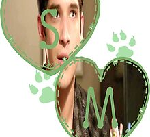 Scott McCall [[S.M]] by thescudders