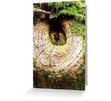 Tree Knot Greeting Card