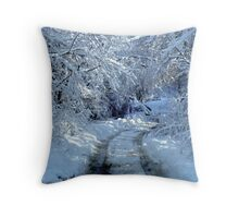 Country Road  ^ Throw Pillow