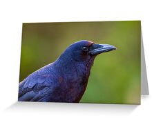 Sunset Crow -- Northwest Crow Greeting Card