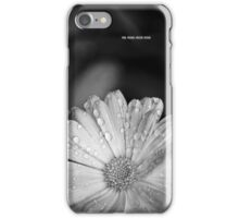 Calendula at the Height of Summer - iphone version iPhone Case/Skin